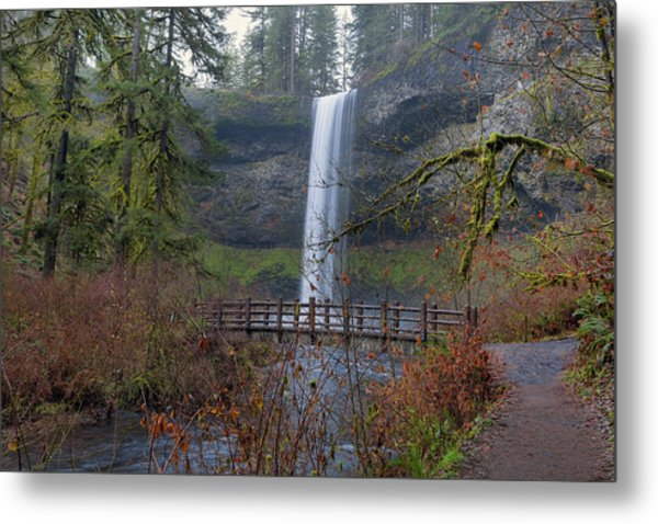 Wood Bridge On Hiking Trail At Silver Falls State Park Metal Print