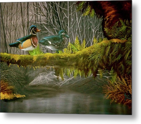 Wood Duck Love Metal Print