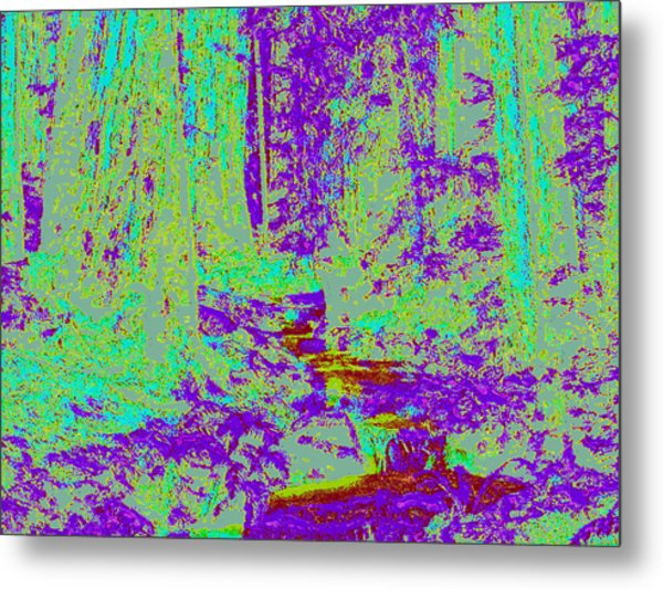 Woodland Forest D4 Metal Print by Modified Image