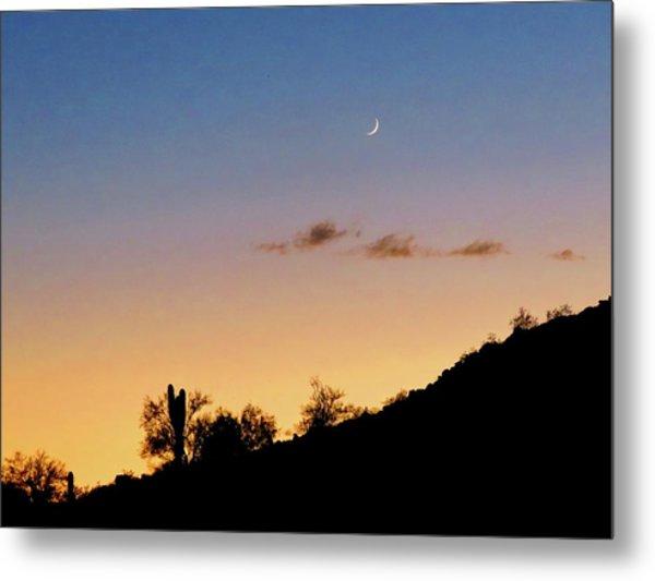 Y Cactus Sunset Moonrise Metal Print