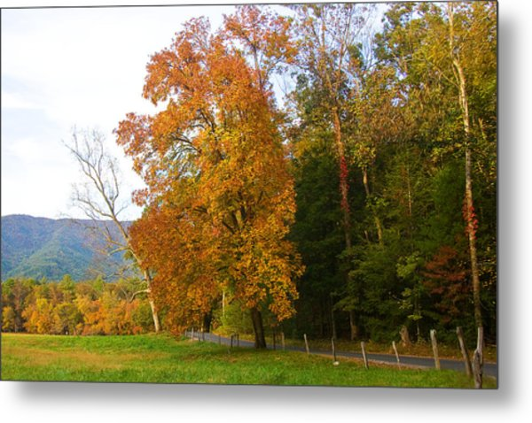 Yellow And Red Tree Metal Print