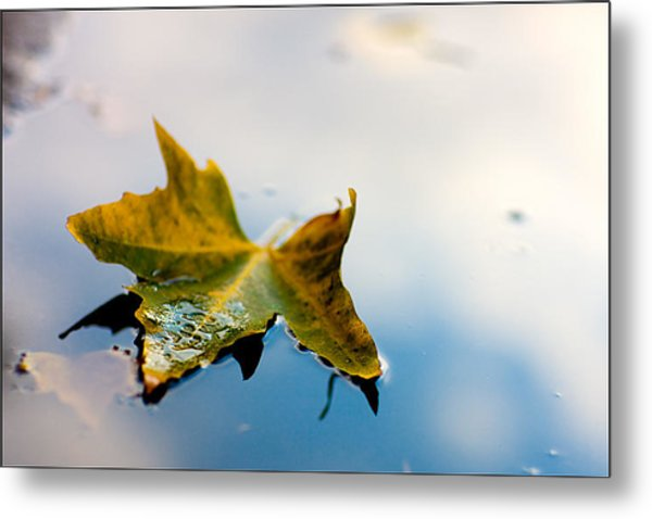 Yellow Plus Blue Equals Edge Metal Print by Janell Anderson