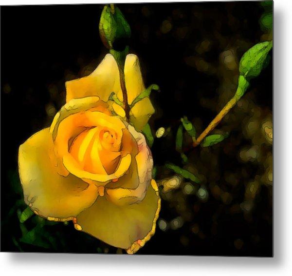 Yellow Rose 2 Metal Print