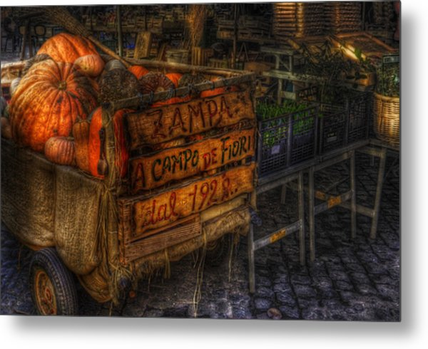 Zucca Metal Print by Brian Thomson