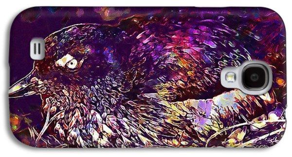Bird Cassins Auklet Crested Birds  Galaxy S4 Case