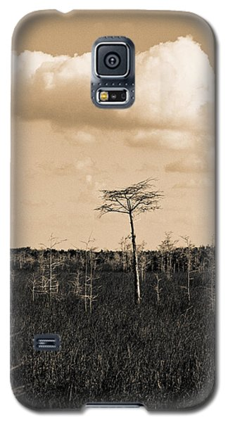 Galaxy S5 Case featuring the photograph lone cypress III by Gary Dean Mercer Clark