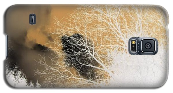 Galaxy S5 Case featuring the photograph Winters Gold  by Kristine Nora