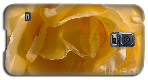 Yellow Rose Ruffles Galaxy S5 Case