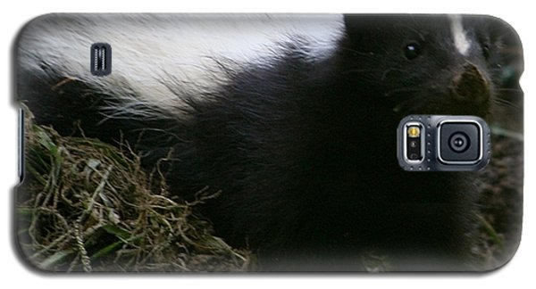 Here Kitty Kitty Galaxy S5 Case by Barbara S Nickerson
