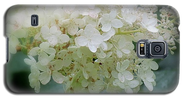 Hydrangea Galaxy S5 Case by France Laliberte