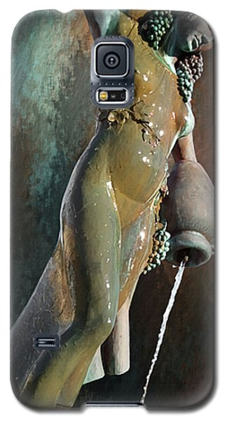 Galaxy S5 Case featuring the photograph Abundance Statue by Robert Smith