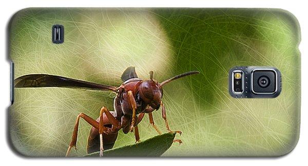 Attack Mode Galaxy S5 Case