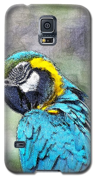 Galaxy S5 Case featuring the photograph Big Blue by Ken Frischkorn