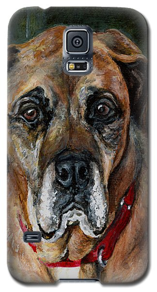 Boo For Dogtown Galaxy S5 Case