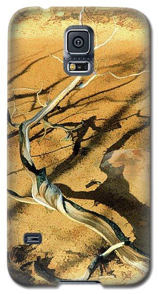 Brins Mesa 07-100 Burnt Galaxy S5 Case by Scott McAllister