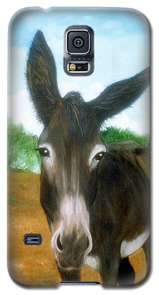 Galaxy S5 Case featuring the painting Chimayo Mule by Jan Amiss