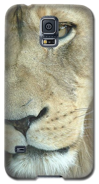 Galaxy S5 Case featuring the photograph King by Margaret Bobb