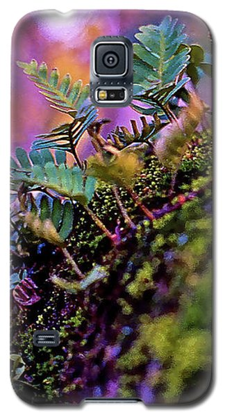 Leaves On A Log Galaxy S5 Case