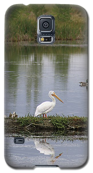 Pelican Reflection Galaxy S5 Case