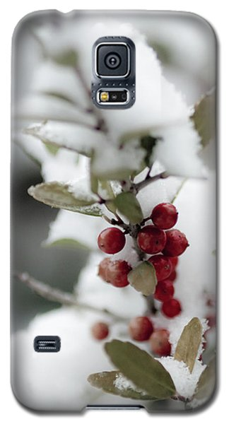 Red Berries Galaxy S5 Case
