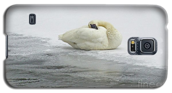 Resting Swan-signed-#1314 Galaxy S5 Case