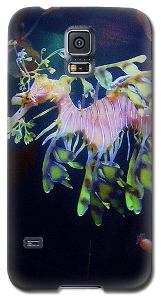 Sea Horse Parade 2 Galaxy S5 Case