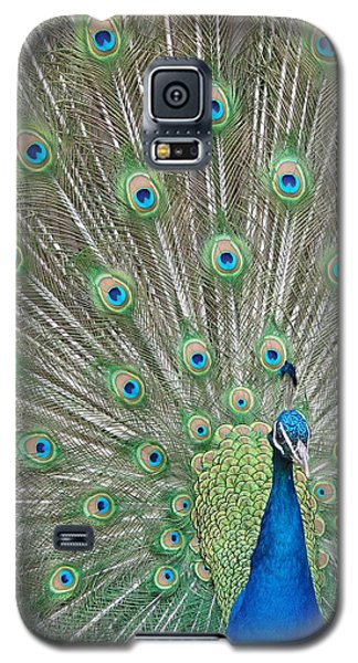 Galaxy S5 Case featuring the photograph Showing Off by Margaret Bobb