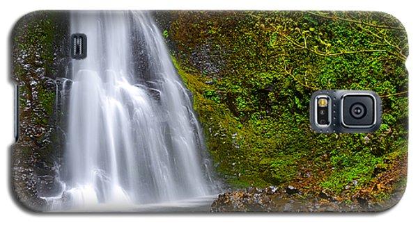 Spring Cascade Galaxy S5 Case by Andrea Hazel Ihlefeld