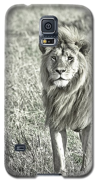 The King Stands Tall Galaxy S5 Case by Darcy Michaelchuk