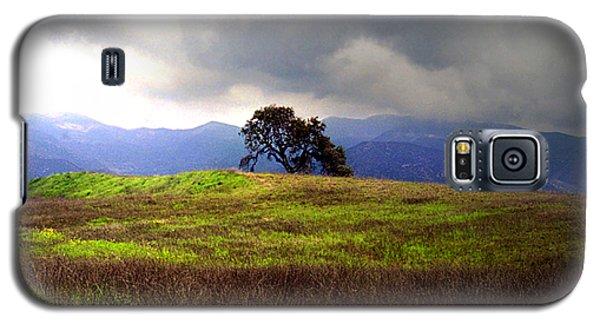 The Last Oak Galaxy S5 Case by Emanuel Tanjala