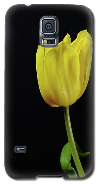 Galaxy S5 Case featuring the photograph Yellow Tulip by Dariusz Gudowicz
