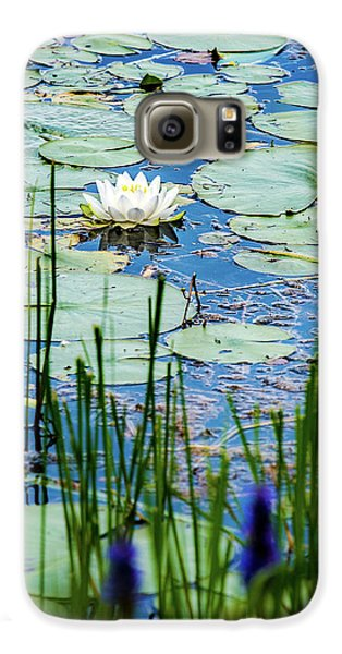 North American White Water Lily Galaxy S6 Case