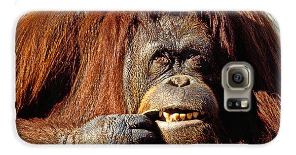 Orangutan  Galaxy S6 Case