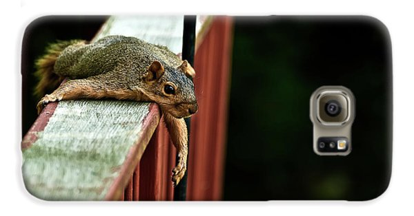 Resting Squirrel Galaxy S6 Case