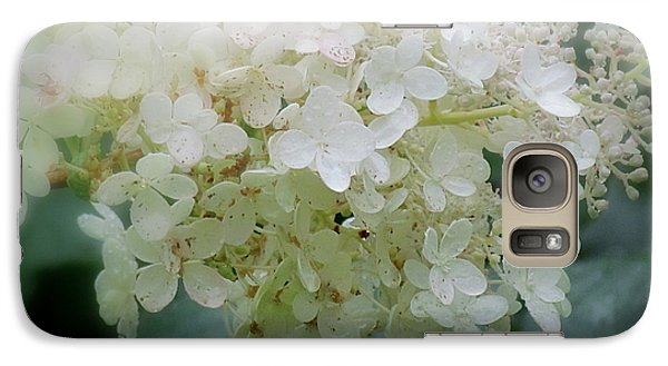 Galaxy Case featuring the photograph Hydrangea by France Laliberte