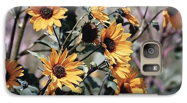 Galaxy Case featuring the photograph Arizona Sunflowers by Juls Adams