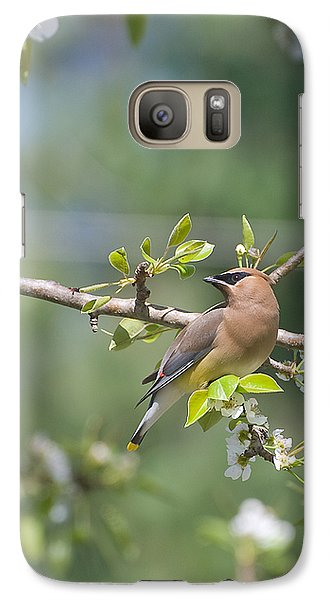 Galaxy Case featuring the photograph Cedar Waxwing by Margaret Palmer