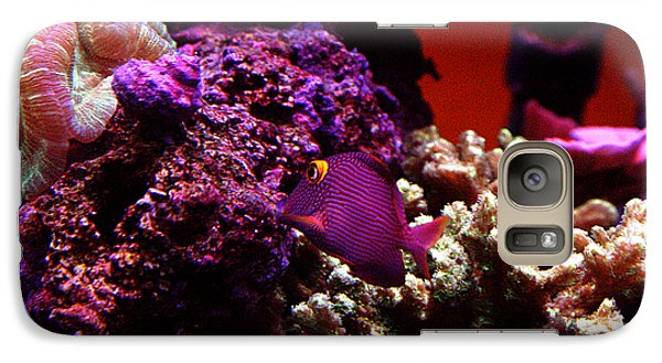 Galaxy Case featuring the photograph Colors Of Underwater Life by Clayton Bruster