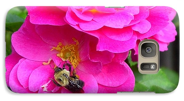 Galaxy Case featuring the photograph Jc And Bee by Mary-Lee Sanders