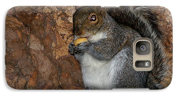 Galaxy Case featuring the photograph Squirrell by Pedro Cardona