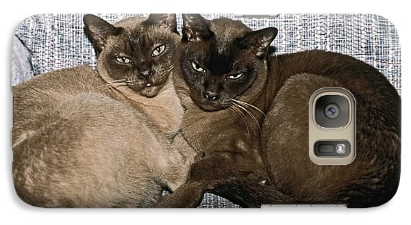 Galaxy Case featuring the photograph Tonkinese Pals by Sally Weigand