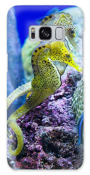 Colorful Seahorses Galaxy Case