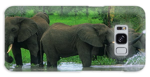 Elephant Shower Galaxy Case
