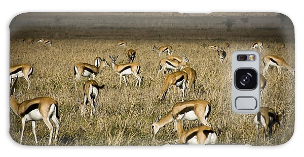 Herd Of Antelope Galaxy Case by Darcy Michaelchuk