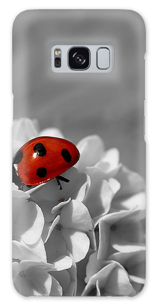 Lady Bug Sc Galaxy Case by Martina Fagan