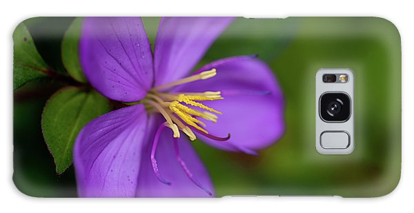 Purple Flower Macro Galaxy Case by Dan McManus