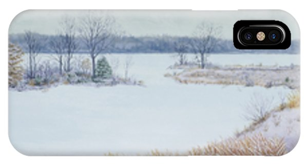 Winter Lake And Cedars IPhone Case