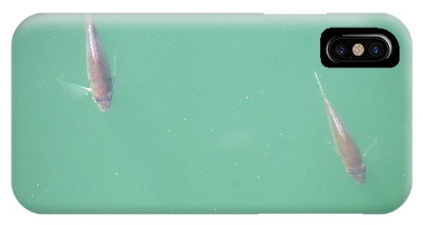 2 Fish In A Pond IPhone Case