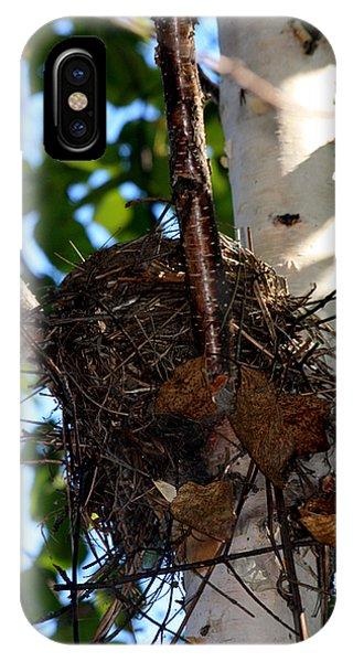 Bird Nest In Birch Tree IPhone Case