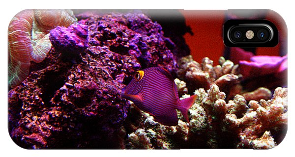 Colors Of Underwater Life IPhone Case